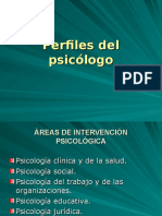areas profesionales (1).ppt