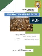 Informe de Cuyes