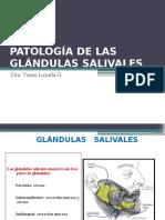 Patología de Las Glándulas Salivales (1)