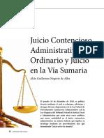 JUICIO CONTENSIOSO.pdf