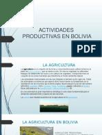 Actividades Productivas en Bolivia