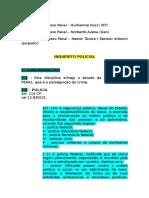 Processo Penal - Nestor.docx