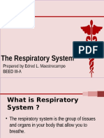 The Respiratory System ED 6(Oh Yeah)