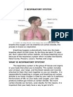 The Respiratory System (Handouts)