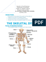 Handouts in skeletal system