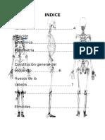 Anatomia Humana Compendio 1.00000