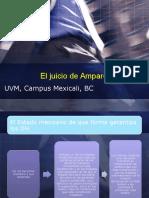 El juicio de Amparo y los efectos.pptx
