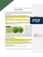 LAS-REDES7_CONEXIÓN-DE-LOS-EQUIPOS.pdf