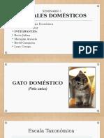 Animales-Domésticos-Zoología-Económica.pptx