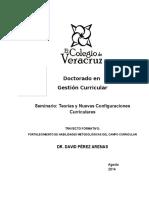Programa Teorías y nuevas configuraciones curriculares DPA 2014
