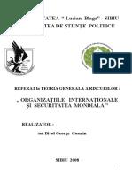 Organizatii Internationale (2)