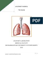 Nasal and Pharynx