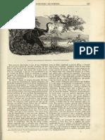 N.º 29 - Jan. 1859