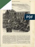 N.º 34 - Fev. 1859