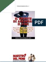 Libro Maestro Del Pene PDF por Rafael Cruz.pdf
