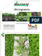 Microgreens Maryland