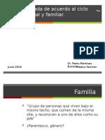 Guía Anticipada de Acuerdo Al Ciclo Vital Familiar (2)