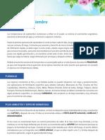 09_labores_septiembre.pdf