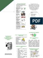Induccion SISO (folleto)