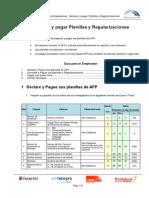 Guia de Usuario - Declarar y Pagar Planillas y Regularizaciones