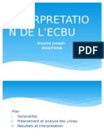 INTERPRETATION DE L'ECBU.pptx
