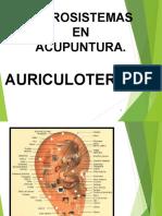 Auriculoterapia para adelgazar funcionalismo