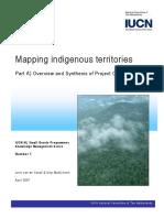 Van de Sandt & Amy MacKinven-mapping indigenous territories.pdf