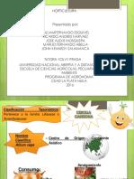 Diapositivas Final de Horticultura