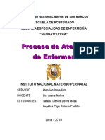 PROCESO DE ATENCION DE ENFERMERIA - UNMSM