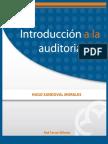 Introduccion a La Auditoria
