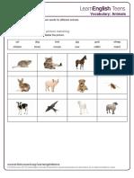 Animals - Exercises