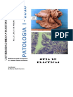 Guia de Practica Patologia i 2016