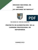 Proyecto de Autoevaluación - Enfermeria 2013