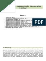Tipificação e Classificação de Carcaças de Bovinos