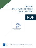 Transfer Pricing Documentation File_Template_Lb. Romana