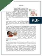 Tumores Oncohematologicos y Pediatricos Grupo3