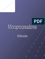 Multinucleo.pdf