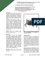araña hexapodo.pdf