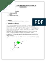 Fuerzas Concurrentes y Condición de Equilibrio.docx 12