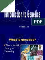 Intro to Genetics (2003)