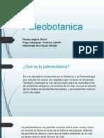 Exp.-Paleobotanica.pptx