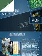 Biomimesis & Fractal