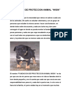 Fundacion de Proteccion Animal