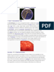 Microbiologia General.pdf