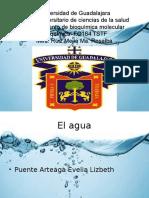 Presentacion AGUA Bioquimica