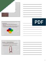 'Identity Development' in Slide Handout Format