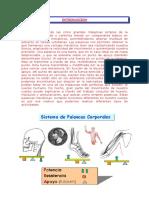 Mecanica Del Cuerpo Humano- Palancas