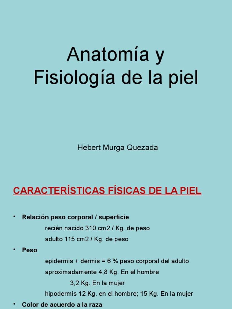 Dorable Anatomía Y Fisiología Nova Imagen - Anatomía de Las ...
