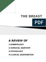 AP Breast