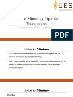 Salario Mínimo y Tipos de Trabajadores 1